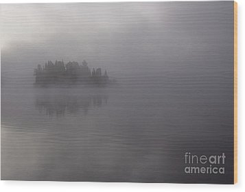 Misty Evergreen Island Wood Print by Chris Hill