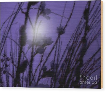 Wood Print featuring the photograph Misty Moonlight Marsh by Roxy Riou