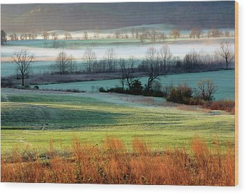 Misty Morning At Cades Cove Wood Print by Dave Mills