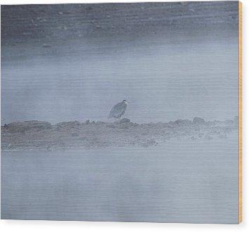 Misty Morning At Norris Lake Wood Print