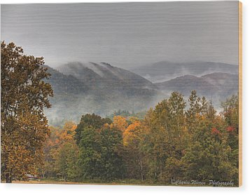 Misty Morning Iv Wood Print by Charles Warren