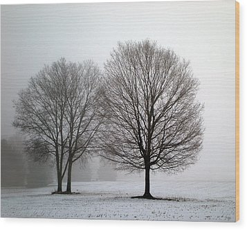 Misty Morning Wood Print by Penny Hunt