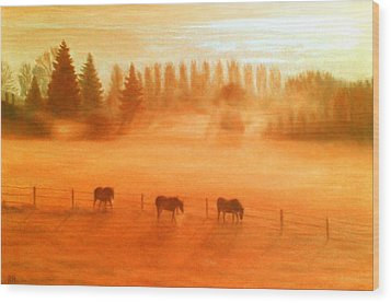Misty Morning Wood Print by Ronald Haber