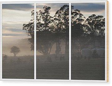 Misty Morning Triptych Wood Print