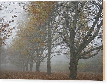 Misty November Wood Print by Georgia Fowler