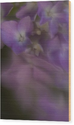 Misty Purple Wood Print