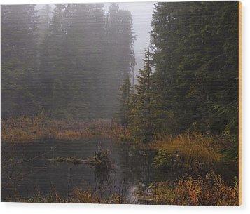 Misty Solitude Wood Print by Mike Reid