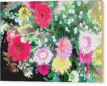 Mixed Asters Wood Print by Elaine Plesser