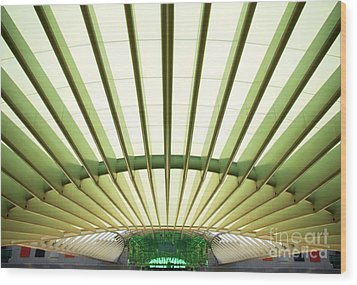 Modern Architecture Wood Print by Carlos Caetano