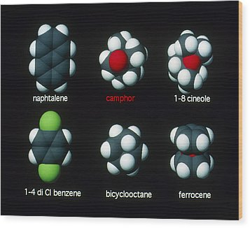 Molecules That Smell Like Camphor Wood Print by David Parker