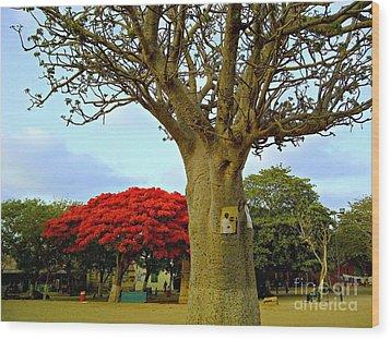 Moments And Tree Wood Print by Fania Simon