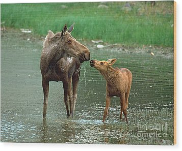 Mommy And Me Wood Print by Doug Herr