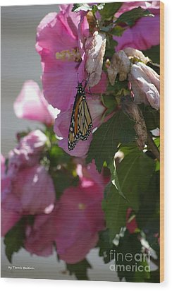 Wood Print featuring the photograph Monarch by Tannis  Baldwin