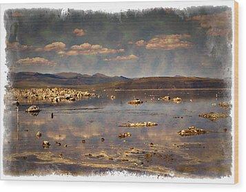 Mono Lake - Impressions Wood Print by Ricky Barnard