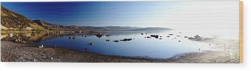 Mono Lake Dawn Wood Print by Michael Courtney