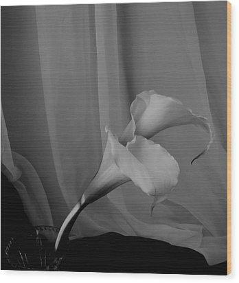 Monochrome Calla Lilies Wood Print