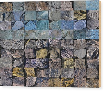 Montage Blue Beach Fossil Specimens Wood Print by William OBrien