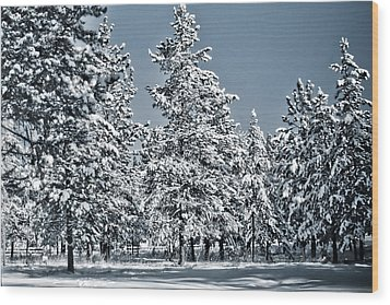 Wood Print featuring the photograph Montana Christmas by Janie Johnson