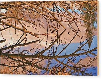 Montana Peace Pond IIi Wood Print by William Kelvie