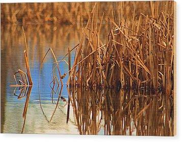 Montana Peace Pond Wood Print by William Kelvie
