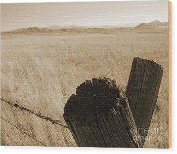 Montana Vista Wood Print by Bruce Patrick Smith