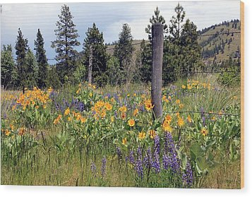 Wood Print featuring the photograph Montana Wildflowers by Athena Mckinzie