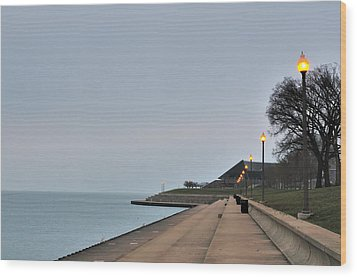 Moody And Lonely Lakefront Wood Print by Bruce Leighty