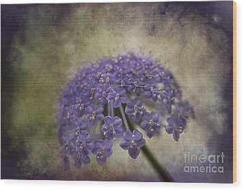 Wood Print featuring the photograph Moody Blue by Clare Bambers