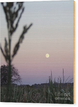 Wood Print featuring the photograph Moon by Andrea Anderegg
