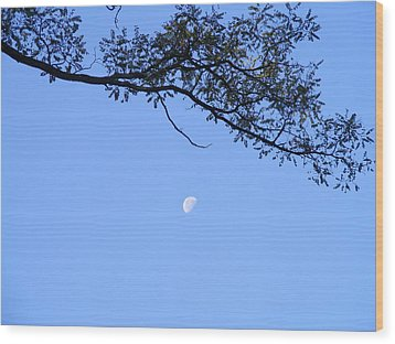 Wood Print featuring the photograph Moon by Bogdan Floridana Oana