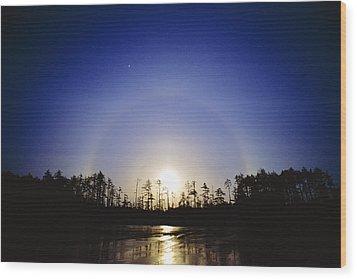 Moon Dog Wood Print by David Nunuk