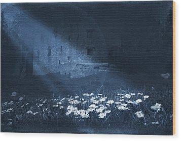 Moon Light Daisies Wood Print by Svetlana Sewell