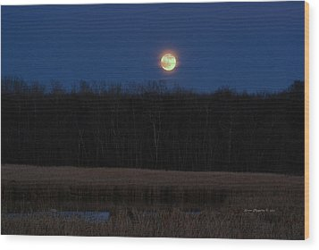 Wood Print featuring the photograph Moon Rise 2 by Steven Clipperton