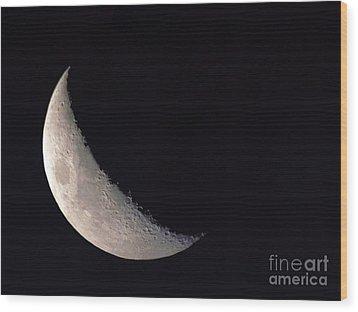 Moon Shadow Wood Print by Sue Stefanowicz