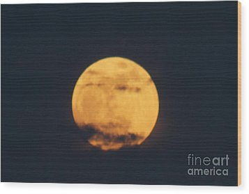 Wood Print featuring the photograph Moon by William Norton
