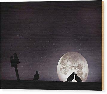Moon With Love Pigeon Wood Print by Mhd Hamwi