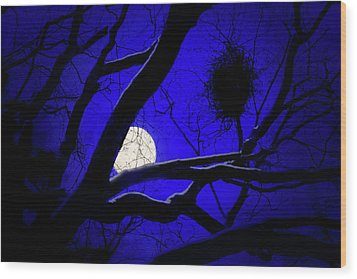 Moon Wood  Wood Print by Richard Piper