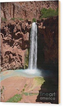 Mooney Falls Wood Print