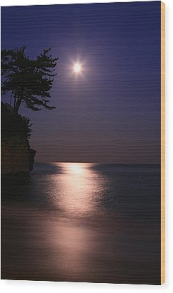Moonlight (cormorant Point) Wood Print by Copyright Crezalyn Nerona Uratsuji