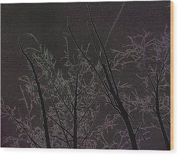 Moonlight I Wood Print