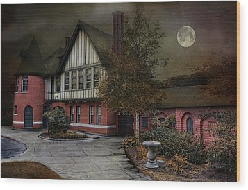 Moonlight Wood Print by Robin-lee Vieira