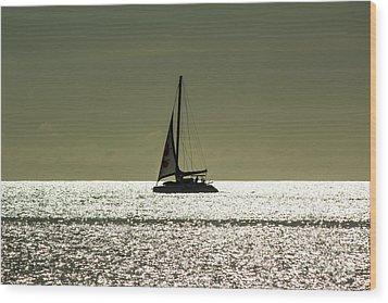 Moonlight Sail Wood Print by Rene Triay Photography