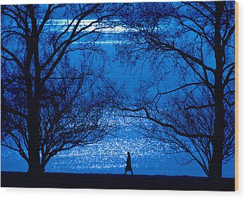 Wood Print featuring the photograph Moonlight Stroll by Mike Flynn