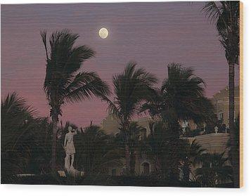 Moonlit Resort Wood Print by Shane Bechler