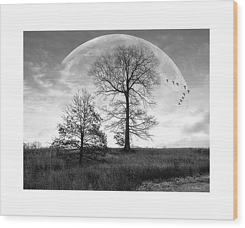 Moonlit Silhouette Wood Print by Brian Wallace
