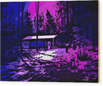 Moonlit Winter Night In The Poconos Wood Print by George Pedro