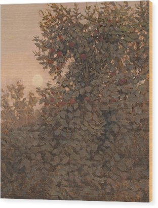 Moonrise In The Orchard Wood Print by Peter  Campbell