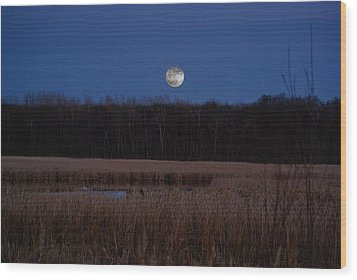 Wood Print featuring the photograph Moonrise by Steven Clipperton