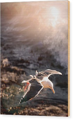 Wood Print featuring the photograph Moonstone Beach Seagull by Michael Rock