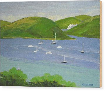 Moored Boats In Charlotte Amalie Bay Wood Print by Robert Rohrich